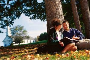 readng a book under a tree
