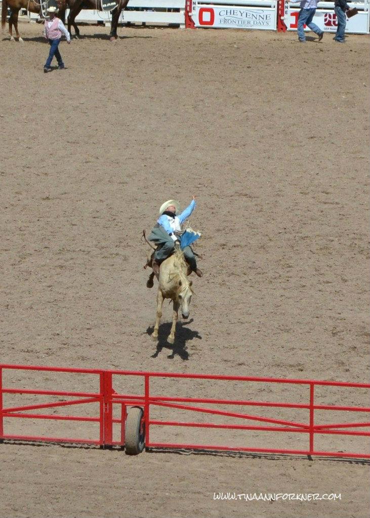 Bronc Rider at Cheyenne Frontier Days 2012 (Photo: TAForkner)